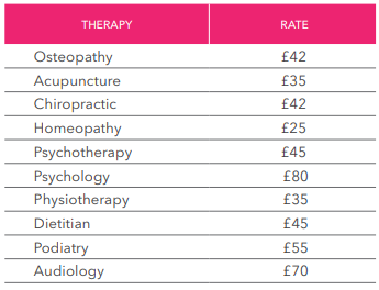 Therapy Fees