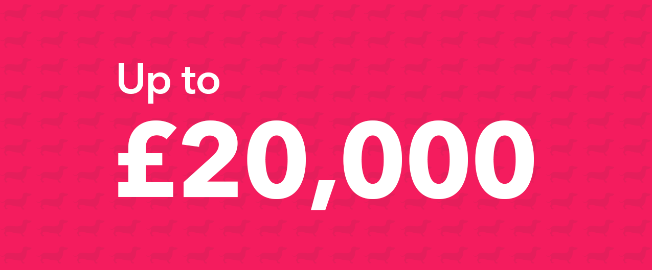 Up to £20,000