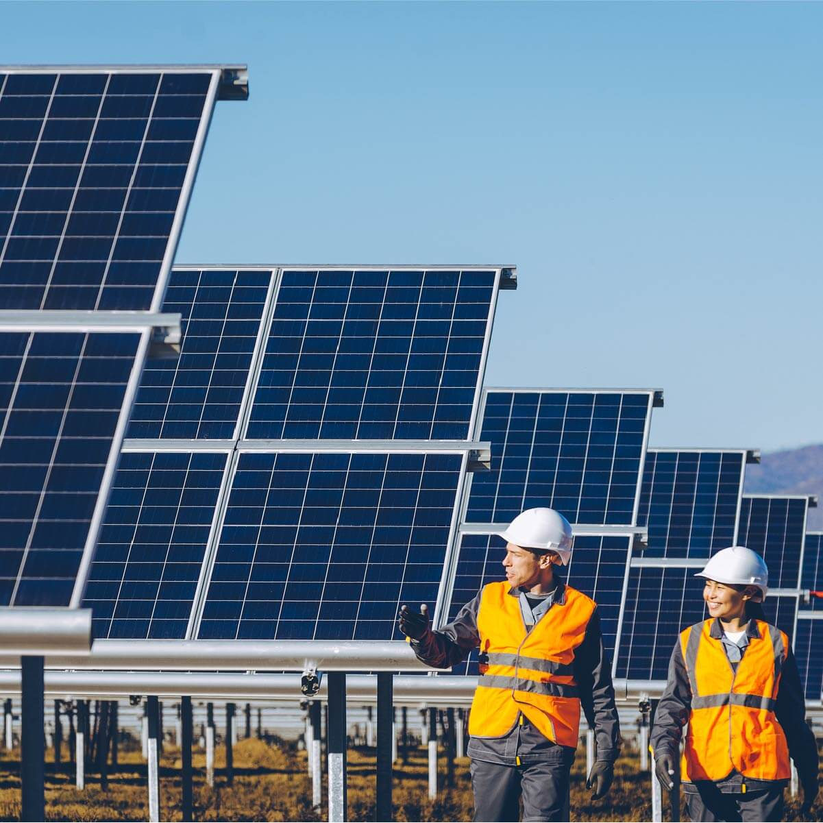 A man and a woman inspecting solar panels