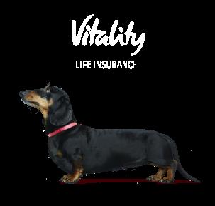 Stanley Life Insurance