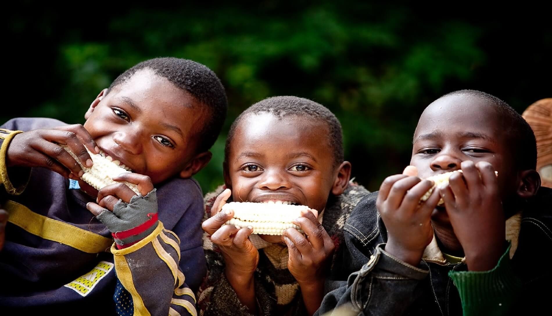 boys eating corn