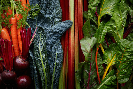 Range of vegetables