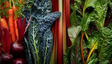 Mixture of vegetables
