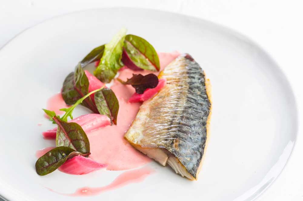Pan fried mackerel in rhubarb sauce