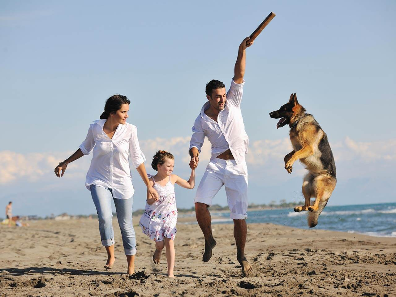 family playing with dog on beach